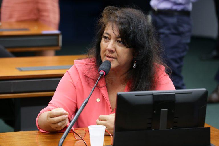 Comissão aprovou texto apresentado por Christiane Yared
