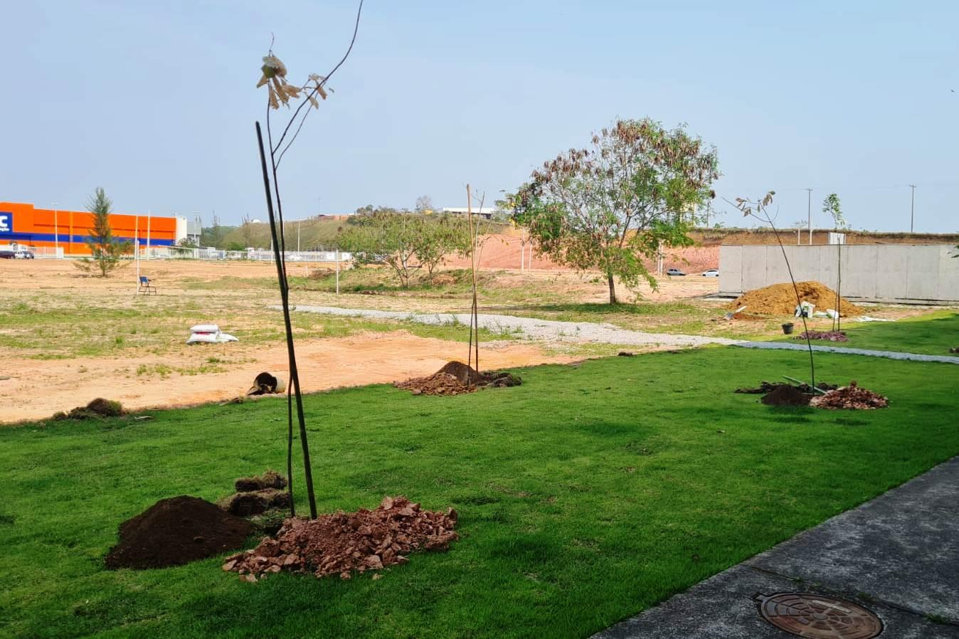 A arborização visa a melhoria da qualidade de vida dentro do campus